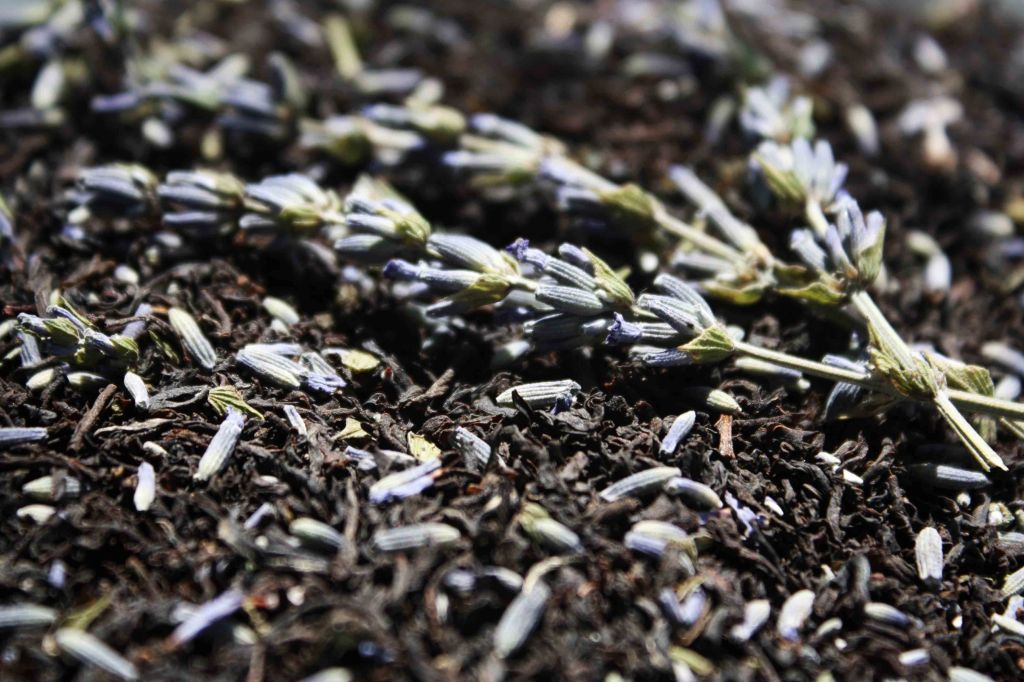 Lavender Tea 2